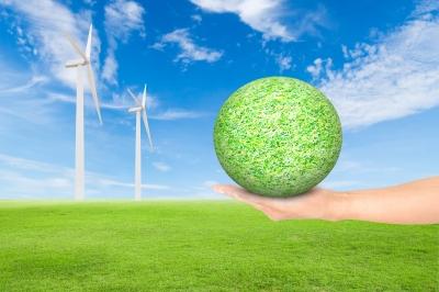 Permalink to:Zarządzanie projektem ekologicznym